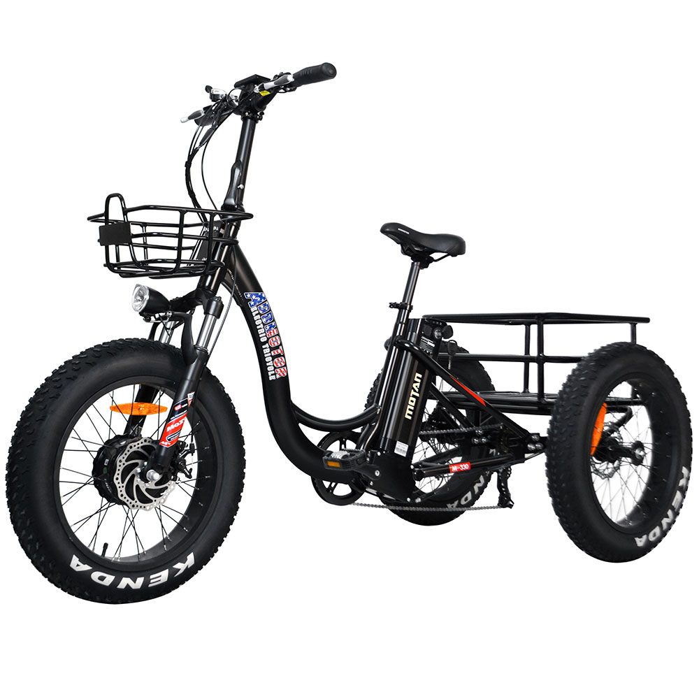 Electric Fat Trike